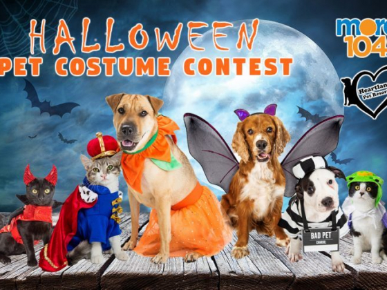 Submit your Halloween Pet Costume…